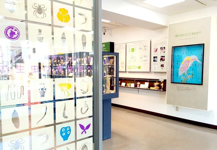 「ダイバーがとらえた寄生虫たち」写真展が目黒寄生虫館で開催されています!(現在開催中&入場無料)