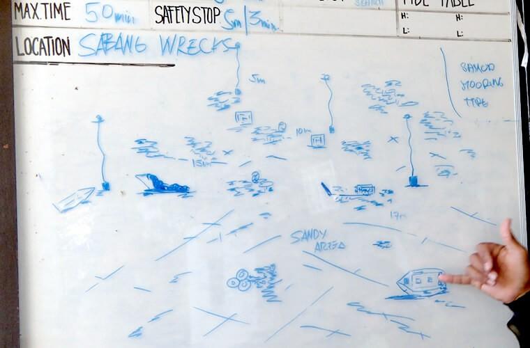 これはクモガニの一種??サバンレックはマクロも船も楽しめます!プエルトガレラの海ログ in Sabang Wreak 2015/04/07